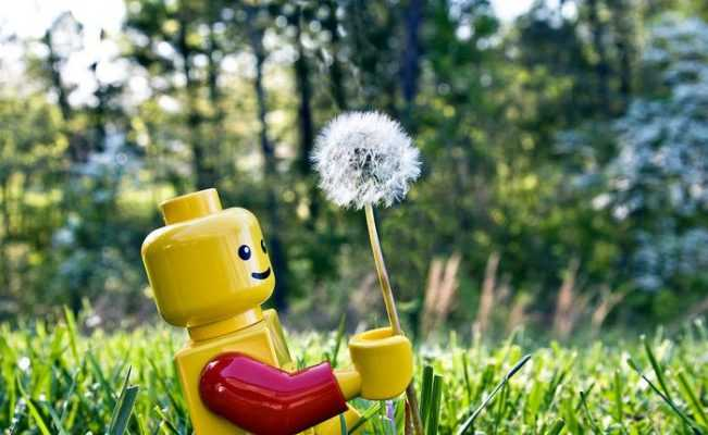 Bitki Bazlı Biyoplastik Lego Oyuncakları