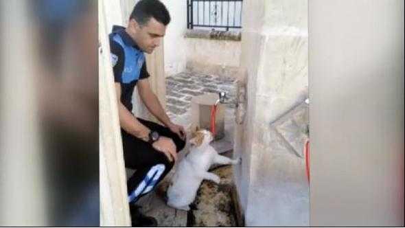 Polis Memurundan Harika Davranış