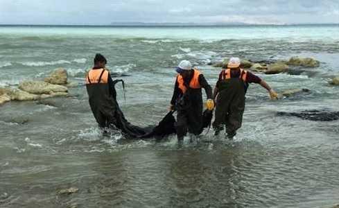 Bir Vatandaş Van Gölü'nü Kurtardı