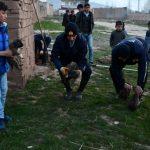 Çukura Düşen Köpek Yavrularını İtfaiye Kurtardı