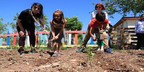 Okulda Hayvan Ve Bitkilere Dokunarak Öğreniyorlar