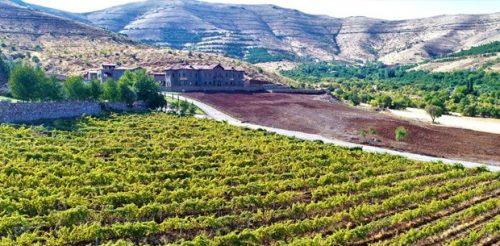 Köyüne Dönen Mühendis, Üzüm Bağlarının Arasına Saray Gibi Otel Yaptı