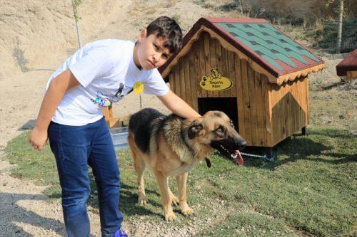 Kayseri'de hasta ve mağdur köpekler için Pati Köy açıldı