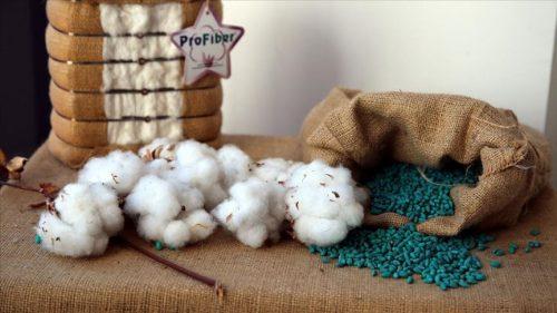 Yerli Pamuk Tohumlarını 7 Ülkeye İhraç Ediyorlar