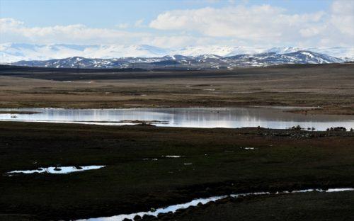 Kars'ta Doğa Canlandı