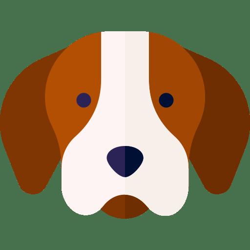 Hayvan