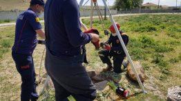 Su Kuyusuna Atılan Köpek Yavrularını İtfaiye Kurtardı