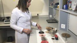 Zeytin Çekirdeğinden Biyoplastik Üretti