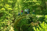 Artvin'de Tarihi Kemer Köprü Keşfedildi
