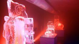 Buz Müzesi Açıldı