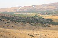 Şanlıurfa'da Gökyüzü Yamaç Paraşütleriyle Renklendi