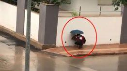 Sokakta Gördüğü Köpeği Yağmurdan Korudu